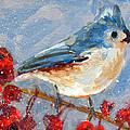 Blue Bird in Winter - Tuft titmouse Print by Patricia Awapara
