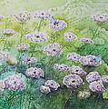 Blue Butterflies by Patsy Sharpe