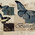 Blue Butterfly - J118118115-01a by Variance Collections