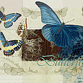 Blue Butterfly - J152164152-01 by Variance Collections