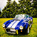 Blue Cobra by Phil 'motography' Clark