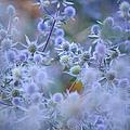 Blue Infinity by Jenny Rainbow