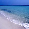 Blue Mountain Beach by Thomas R Fletcher