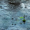 Blue Rain - Featured 3 Poster by Alexander Senin
