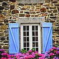 Blue shutters Print by Elena Elisseeva