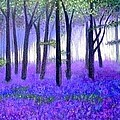 Bluebells forest-Bluebells wood by Marie-Line Vasseur