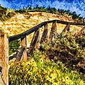 Boardwalk Steps by Anthony Citro
