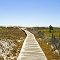 Boardwalk Print by Susan Leggett