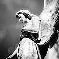 Bokeh Angel In Infrared by Sonja Quintero
