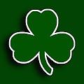 Boston Celtics by Tony Rubino