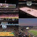 Boston Sports Teams And Fans by Juergen Roth