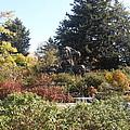 Botanical Gardens1 by Dejan Maksimovic