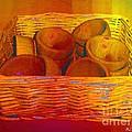 Bowls In Basket Moderne by RC deWinter