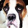 Boxer Art - Sad Eyes by Sharon Cummings