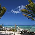 Breezy Island Life by Adam Romanowicz