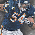Brian Urlacher Seek And Destroy by David Courson