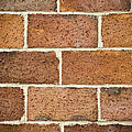 Brick Wall by Frank Tschakert