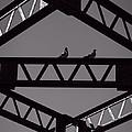 Bridge Abstract by Bob Orsillo