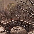 Bridge In Central Park by Tom Shropshire