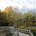 Bridge Into Autumn by Guy Ricketts