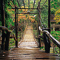 Bridge Over Waterfall by Nawarat Namphon