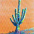 Bright Cactus by Greg Wells