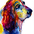 Brilliant Basset Hound watercolor painting Print by Svetlana Novikova