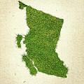 British Columbia Grass Map by Aged Pixel