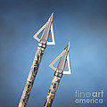 Broadheads On Blue by Jerry McElroy