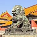 Bronze Lioness Forbidden City Beijing by Colin and Linda McKie