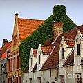 Bruges Rooftops by Carol Groenen