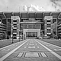 Bryant Denny Stadium 2011 Print by Ben Shields