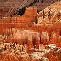Bryce Canyon Landscape by Jane Rix