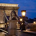 Budapest Bridge with Lion