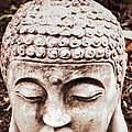 Buddha - Serenity  by Patricia Januszkiewicz