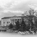 Buffalo History Museum 2 by Peter Chilelli