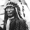 Buffalo Nickel Portrait by Underwood Archives