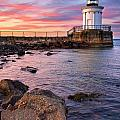 Bug Light Park by Benjamin Williamson