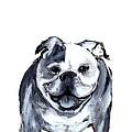 Bulldog  by Barbara Marcus