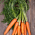 Bunched Carrots by Jane Rix