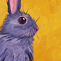 Bunny by Nancy Merkle