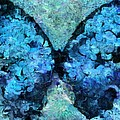 Butterfly Art - D11bl02t1c by Variance Collections