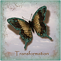 Butterfly Of Transformation by Bobbee Rickard