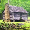 Cabin In The Smokies by Marty Koch