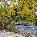 Cache La Poudre by Baywest Imaging