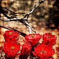 Cactus Flowers 2 by Julie Lueders