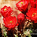 Cactus Flowers by Julie Lueders