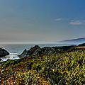 California - Big Sur 003 by Lance Vaughn