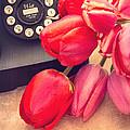 Call Me My Love by Edward Fielding