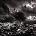 Calm Before The Storm by Bob Orsillo